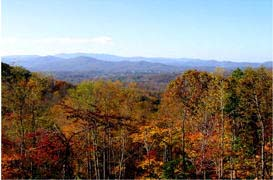 Franklin North Carolina land for sale fall foliage